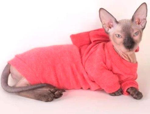 сшить свитер коту