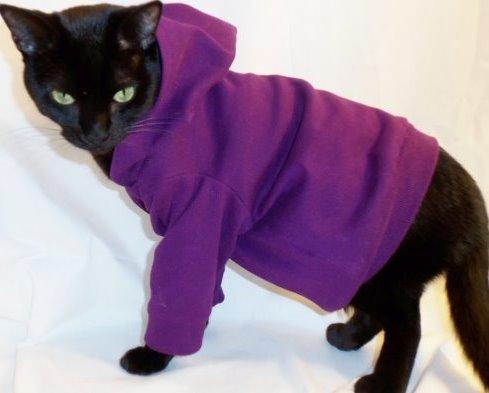 Как сделать платье для кошек
